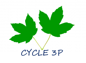 CYCLE 3P-2 feuille