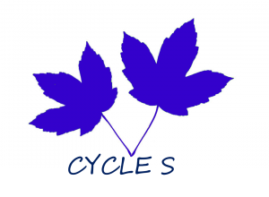 CYCLE S- 2 feuilles