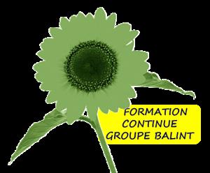 seminaire balint